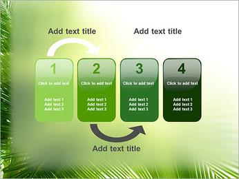 Coconut Tree Modèles des présentations  PowerPoint - Diapositives 11