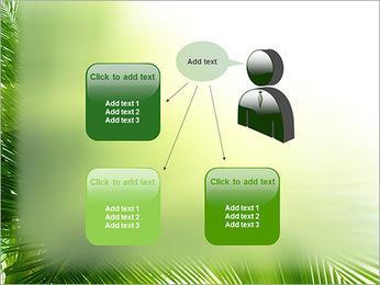Coconut Tree Modèles des présentations  PowerPoint - Diapositives 12