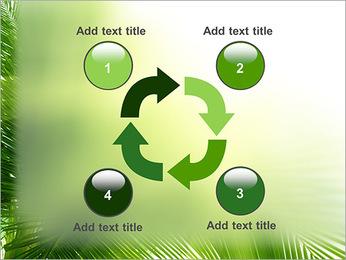 Coconut Tree Modèles des présentations  PowerPoint - Diapositives 14