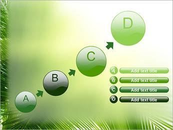 Coconut Tree Modèles des présentations  PowerPoint - Diapositives 15