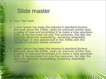 Coconut Tree Modèles des présentations  PowerPoint - Diapositives 2