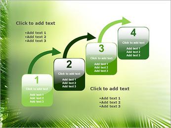 Coconut Tree Modèles des présentations  PowerPoint - Diapositives 20