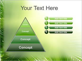 Coconut Tree Modèles des présentations  PowerPoint - Diapositives 22
