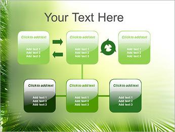 Coconut Tree Modèles des présentations  PowerPoint - Diapositives 23