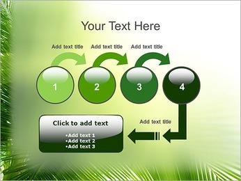 Coconut Tree Modèles des présentations  PowerPoint - Diapositives 4