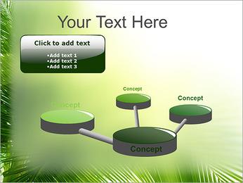 Coconut Tree Modèles des présentations  PowerPoint - Diapositives 9