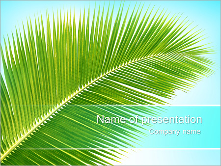 Coconut brunch powerpoint template backgrounds id 0000003588 coconut brunch powerpoint template toneelgroepblik Gallery