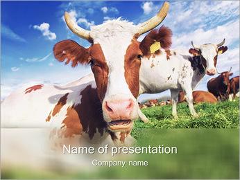Ferme de vache Modèles des présentations  PowerPoint - Diapositives 1