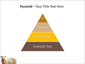 Troupeau de moutons Modèles des présentations  PowerPoint - Diapositives 10