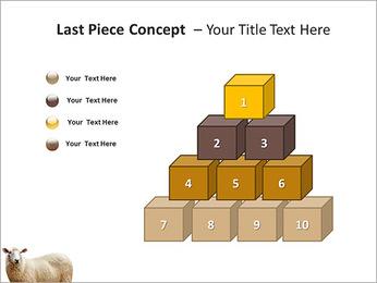 Troupeau de moutons Modèles des présentations  PowerPoint - Diapositives 11