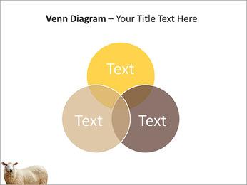 Troupeau de moutons Modèles des présentations  PowerPoint - Diapositives 13