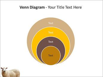 Troupeau de moutons Modèles des présentations  PowerPoint - Diapositives 14