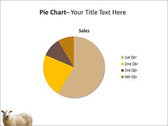 Troupeau de moutons Modèles des présentations  PowerPoint - Diapositives 16