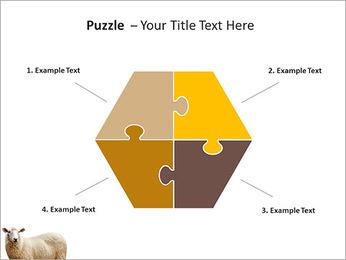 Troupeau de moutons Modèles des présentations  PowerPoint - Diapositives 20