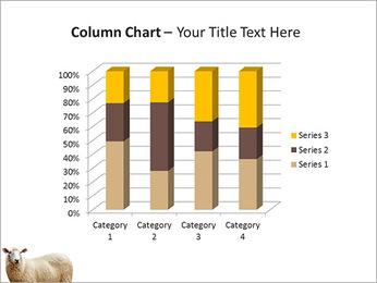 Troupeau de moutons Modèles des présentations  PowerPoint - Diapositives 30
