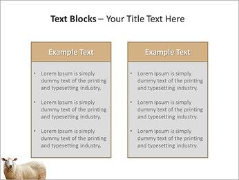 Troupeau de moutons Modèles des présentations  PowerPoint - Diapositives 37