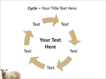 Troupeau de moutons Modèles des présentations  PowerPoint - Diapositives 42