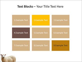 Troupeau de moutons Modèles des présentations  PowerPoint - Diapositives 48
