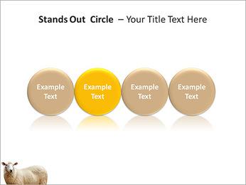 Troupeau de moutons Modèles des présentations  PowerPoint - Diapositives 56