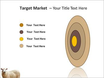Troupeau de moutons Modèles des présentations  PowerPoint - Diapositives 64