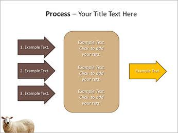 Troupeau de moutons Modèles des présentations  PowerPoint - Diapositives 65