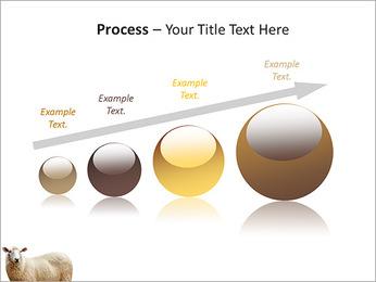 Troupeau de moutons Modèles des présentations  PowerPoint - Diapositives 67