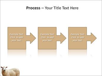 Troupeau de moutons Modèles des présentations  PowerPoint - Diapositives 68