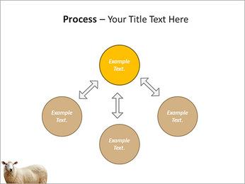Troupeau de moutons Modèles des présentations  PowerPoint - Diapositives 71