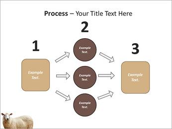 Troupeau de moutons Modèles des présentations  PowerPoint - Diapositives 72