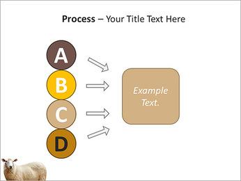 Troupeau de moutons Modèles des présentations  PowerPoint - Diapositives 74