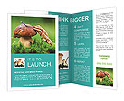 Mushroom In The Grass Brochure Templates