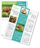 Mushroom In The Grass Newsletter Template