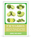 Slices Of Lime Ad Templates