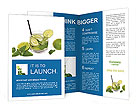 Mojito Cocktail Brochure Templates