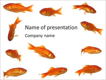 gold fish template