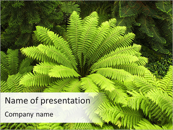 Fern PowerPoint Template
