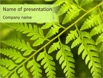 Macro Fern Leaf PowerPoint Template