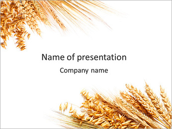 Wheat Harvest PowerPoint Template