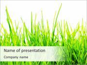 Fresh Green Grass PowerPoint Templates