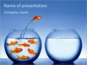 Aquarium With Fish PowerPoint Templates