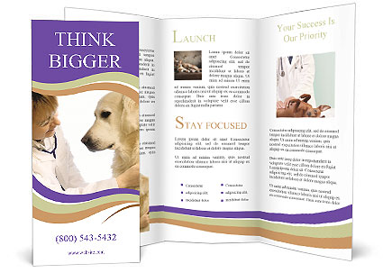 dog at vet clinic brochure template