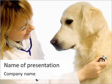 Dog at vet clinic powerpoint template backgrounds id 0000003962 dog at vet clinic powerpoint templates toneelgroepblik Choice Image