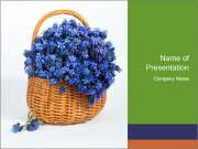 Springtime Flowers PowerPoint Templates