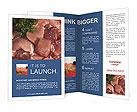 0000030363 Brochure Templates