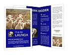 0000030527 Brochure Templates