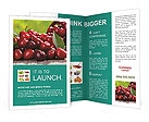 0000030628 Brochure Templates