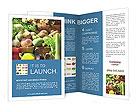 0000030630 Brochure Templates