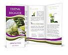 0000030680 Brochure Templates