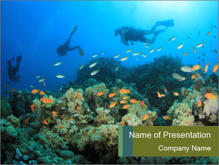 Diving in uae powerpoint template backgrounds google slides id diving in uae powerpoint template toneelgroepblik Choice Image