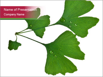 Fresh Medicine Plant PowerPoint Template